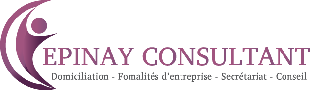Epinay Consultant SARL